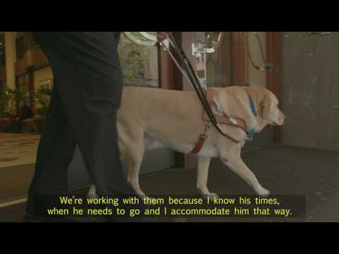 How do you know when your Guide Dog needs a toilet break?