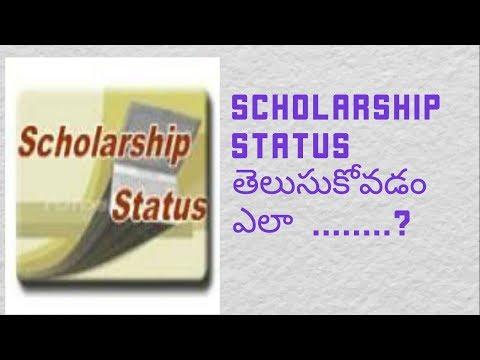 Know your scholarship status