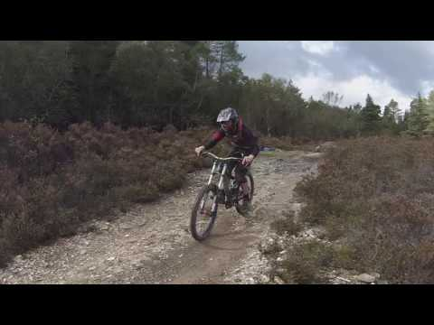 Fresh Dirt | Tavi Woodlands
