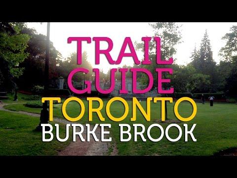 Burke Brook Ravine Trail Guide | Toronto
