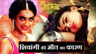 BIG Mystery of NAAGIN 3 SOLVED ? | Latest Upcoming Twist | NAAGIN 3