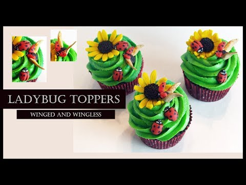LADYBUG CAKE / CUPCAKE TOPPERS (Winged and Wingless): Edible - Modeling Chocolate