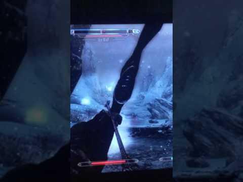Skyrim:Spinning Ice wolf