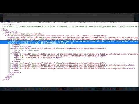 Animate CC(HTML 5) Radioset component