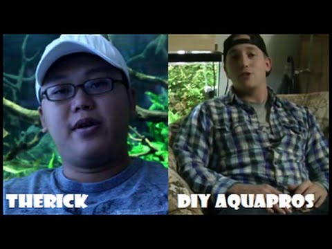 TheRick One on One with DIY AQUAPROS