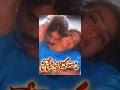 Ninne Pelladatha Telugu Full Movie Nagarjuna Tabu