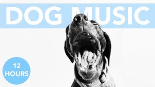 ASMR FOR DOGS! Relaxing Music to Calm Anxious Dogs!