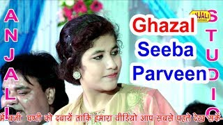 Chain Se Jeene Nhi Denge Zamane Wale Ghajal / Seeba parveen Kanpur