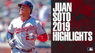 Juan Soto 2019 Regular Season Highlights | MLB Highlights