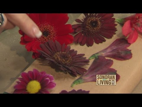 Terri O shares ways to preserve your flowers