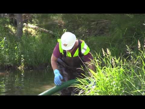 Diesel Spill Clean Up