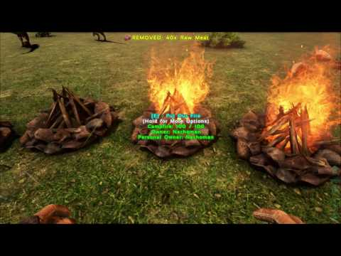 How to cook many Raw Meats at a time - Ark Survival Evolved