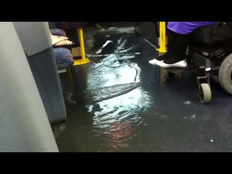 Flood on the Mississauga Bus