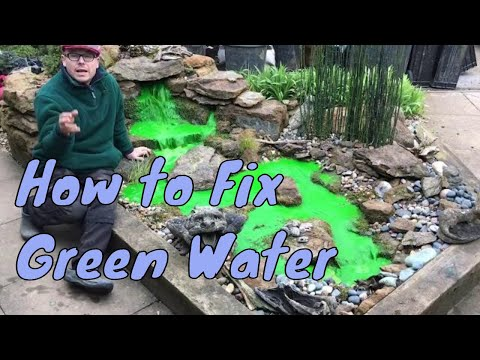 How to Fix Green Water Features | Green Pond Water Fix