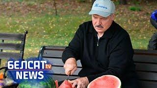 Лукашэнка паказаў свае кавуны | Лукашенко показал свои арбузы