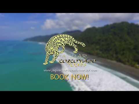 Jaguar Corcovado Tours - Parque Nacional Corcovado - Costa Rica