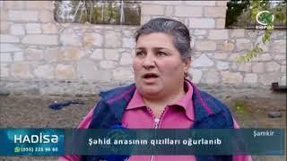 Şəmkirdə şəhid anasının qızılları oğurlanıb - Kəpəz TV