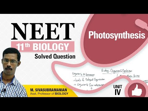NEET 11th Biology || Photosynthesis || Solved Multiple Choice Question || Unit-IV