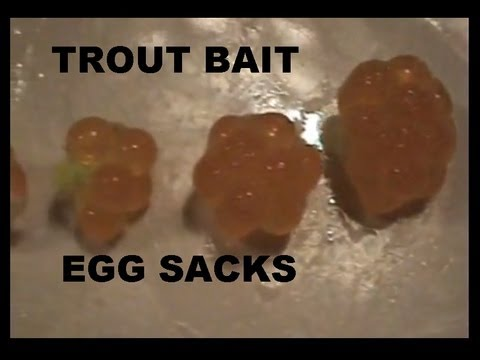 EGG SACKS / TROUT BAIT  how to