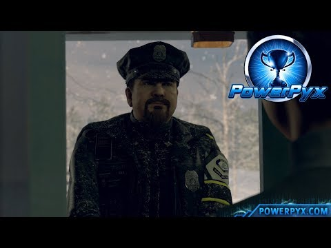 Detroit Become Human - NOTHING TO SEE HERE Trophy Guide (Kara makes Cop go away)