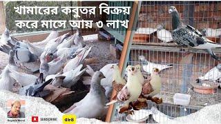 মুক্তাগাছার জলিলের বাণিজ্যিক কবুতর খামার | মাসে আয় ১ লাখ টাকার উপরে | Commercial pigeon farm