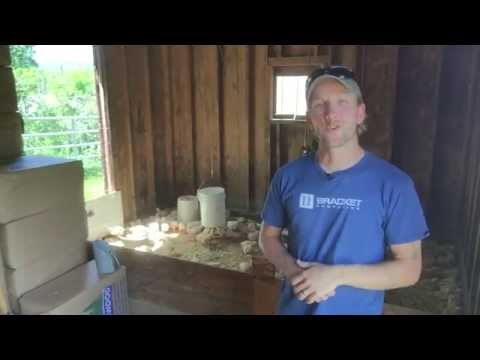 When to move chickens from brooder to pasture