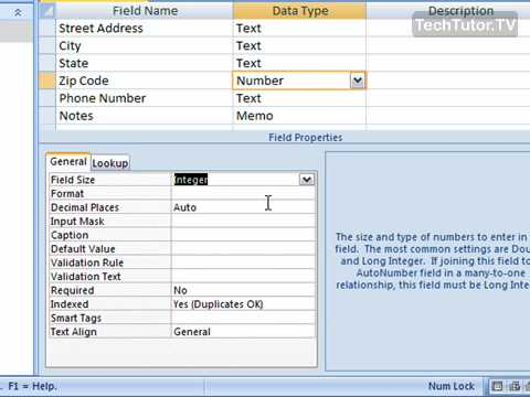 Use the Number Data Type in Access 2007