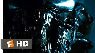 Alien (1979) - The Alien Appears Scene (3/5)   Movieclips