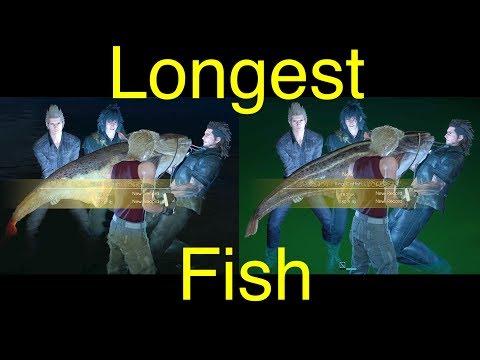 Final Fantasy XV: Longest Fish (King Catfish and Giant Catfish)