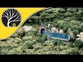 How To Use Forest Canopy | Woodland Scenics | Model Scenery