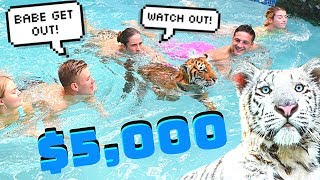 LAST TO LEAVE POOL WITH A TIGER WINS $5,000