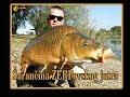 Download Video Download Šarančina ZERPovskog jutra / Big common carp from the lake ZERP 3GP MP4 FLV