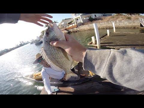 Gold Coast Pontoon Fishing! Fishing with Andy!!