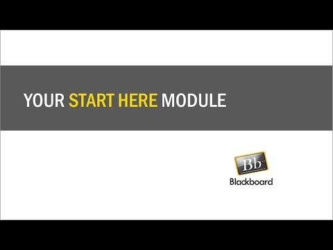 Your Start Here Module in Blackboard