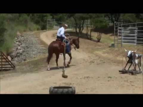 Teaching Your Horse to Drag Objects Part 2
