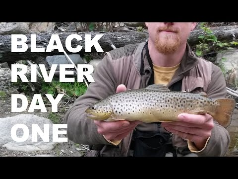 Black River Trophy Trout Day One