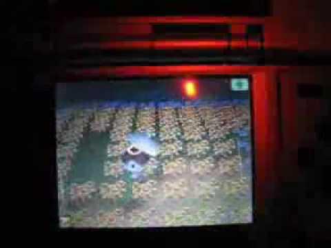 Animal Crossing Wild World Hybrid Trampling
