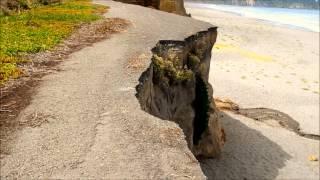 California Beach Erosion