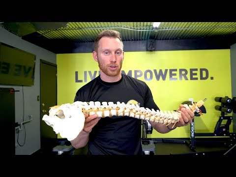 Don't Let This Happen To Your Spine!