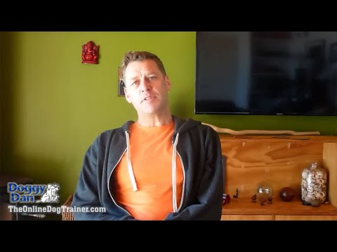 Testimonial Kenton Osmond