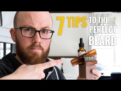 Beard Care Routine - The Perfect Regimen For A Great Looking Beard