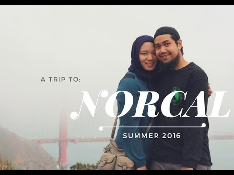What to do in NORCAL?