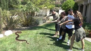 CRAZY SNAKE PRANK ON BRAWADIS!!