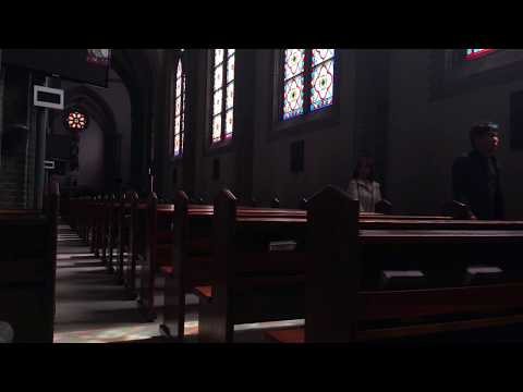 Ambient Music in Myeongdong Cathedral  (Live ver)