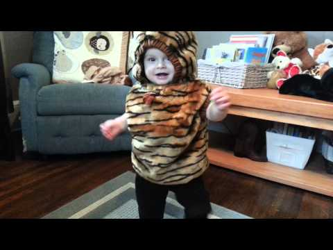 The tiger costume