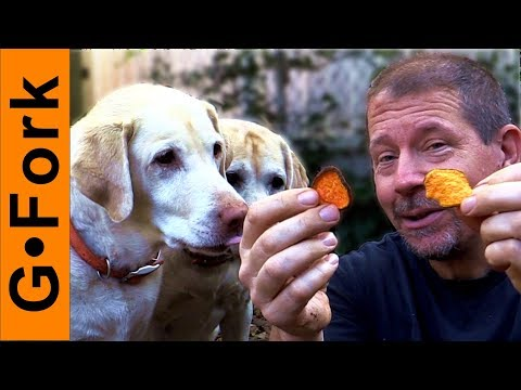 Homemade Sweet Potato Dog Treats Recipe Your Dogs Will Love | GardenFork