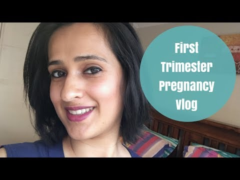 First trimester vlog