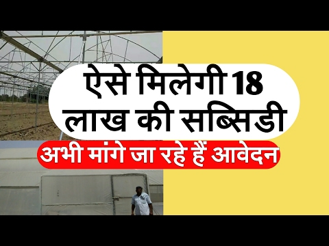 Polyhouse hydroponic farming business procedure to get 18 lakh rupees subsidy
