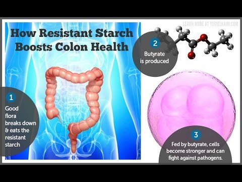 Resistant Starch - The Healthy Carb No One is Talking About