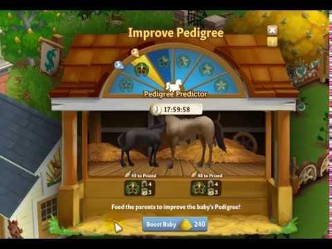 FV2 FUN - How To Get Pedigree 2 Horses